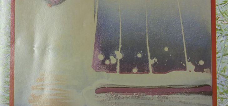 Kapiiuara – 1 Edição – Poema