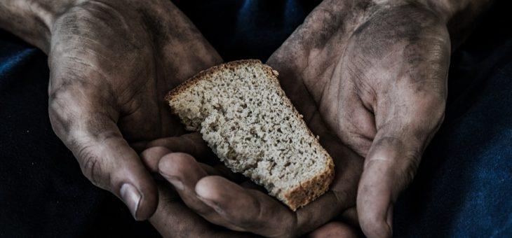 A Fome, o Agronegócio, o Meio Ambiente e o Capital
